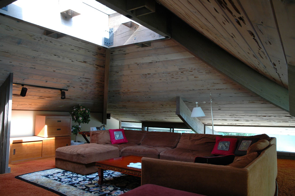 Erickson Stevens Home For Sale In Palatine Modern Illinois