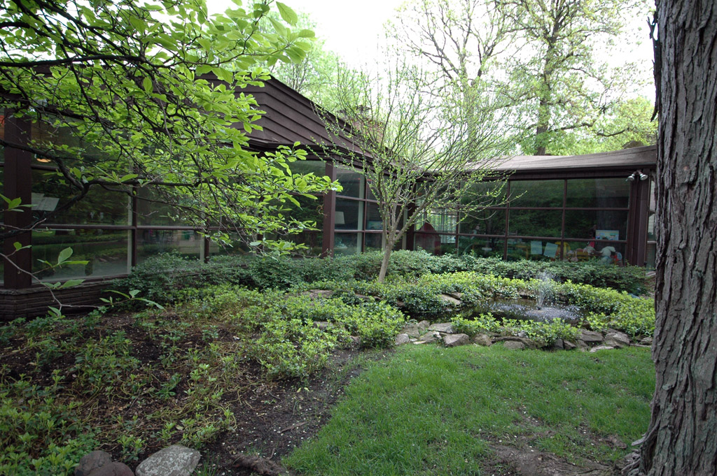 Another shot of the some of the backyard landscaping