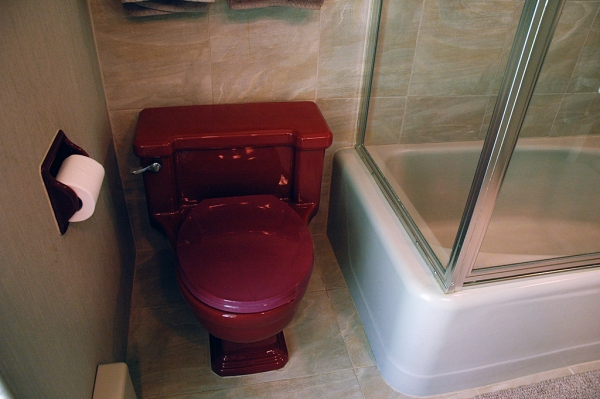 The original one-piece toilet. The bathroom originally had just a shower stall, so Lee & Rick added a tub.