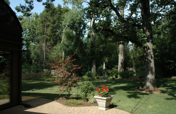 These beautiful, old trees lining the property offer both serenity and privacy