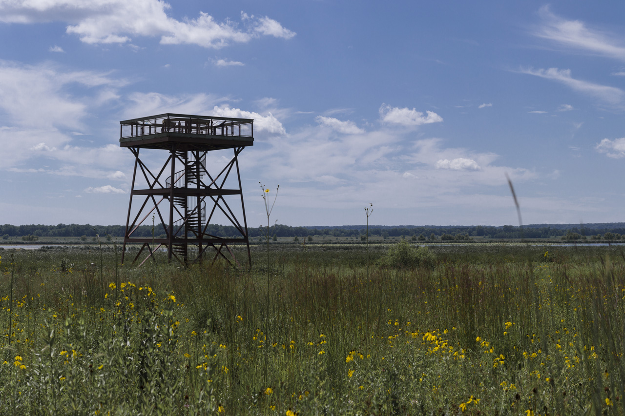 The nearby Dixon Waterfowl Refuge